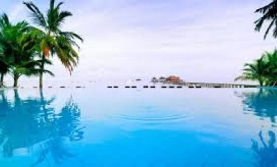 Infinity pool with palm trees on each side