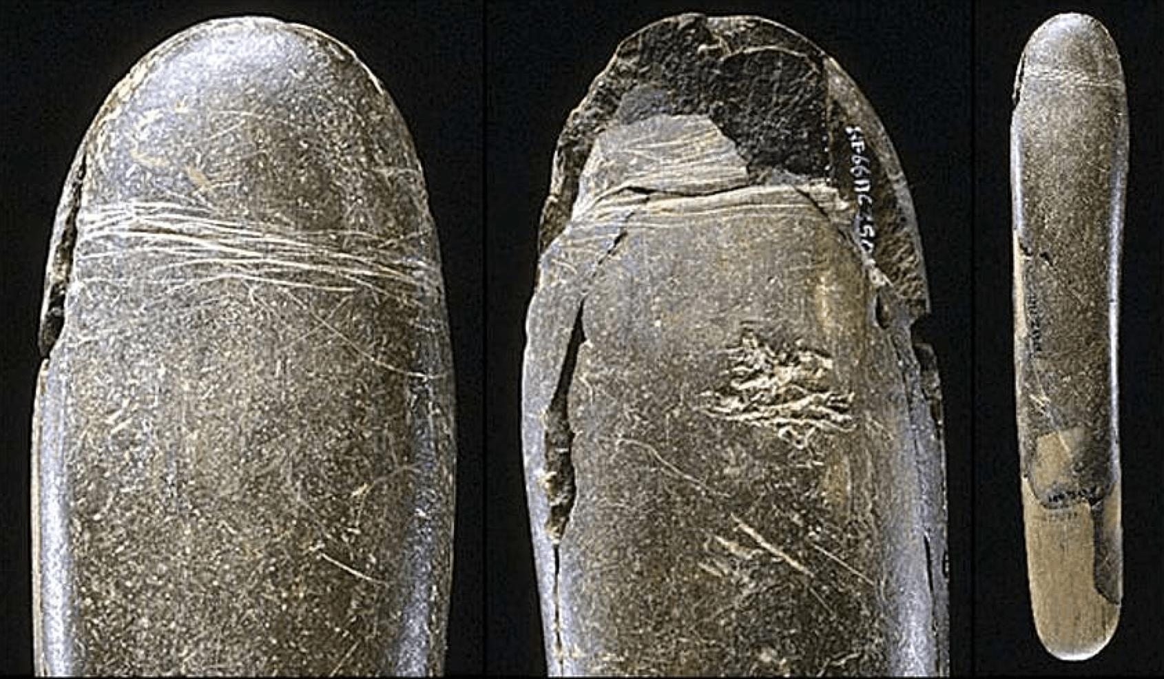 Секс человека каменного века 13 фотография