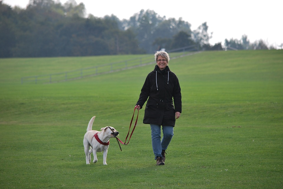 No Excuses: Fun Ways to Lose Weight-Walk your dog