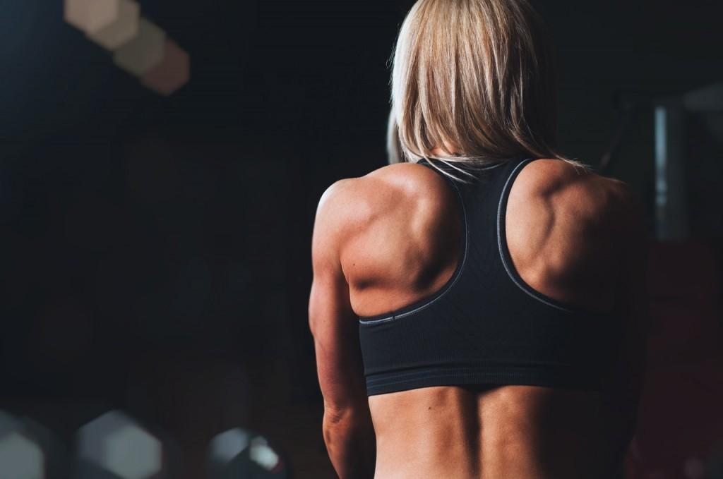 Muscle helps burn fat