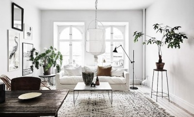 Affordable Home Design Trends for Millennials