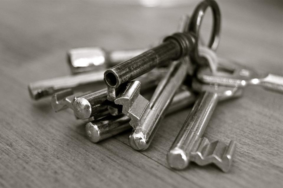 silver keys in a keyring