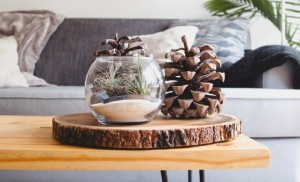 centre piece on a coffee table