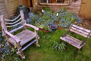 Wooden outdoor chairs surrounded by flower pots