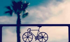 Bike on a sunset background