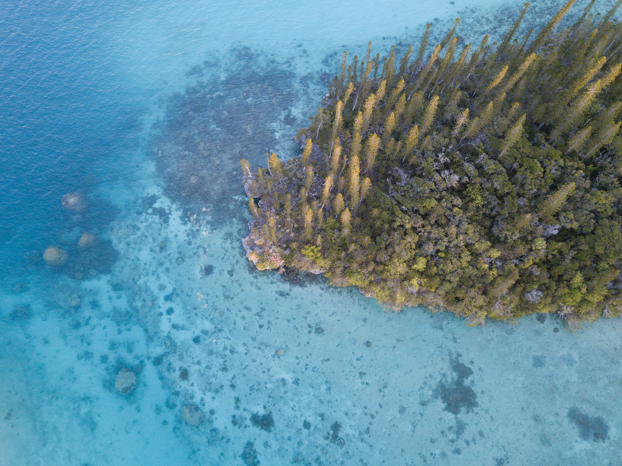 New Caledonia Sights and Attractions- Isle of Pines, New Caledonia
