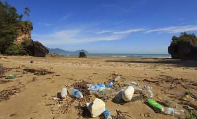 Plastic That Can Degrade in Three Hours