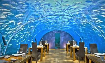 World's 10 Wackiest Restaurantsd's 10 Wackiest Restaurants