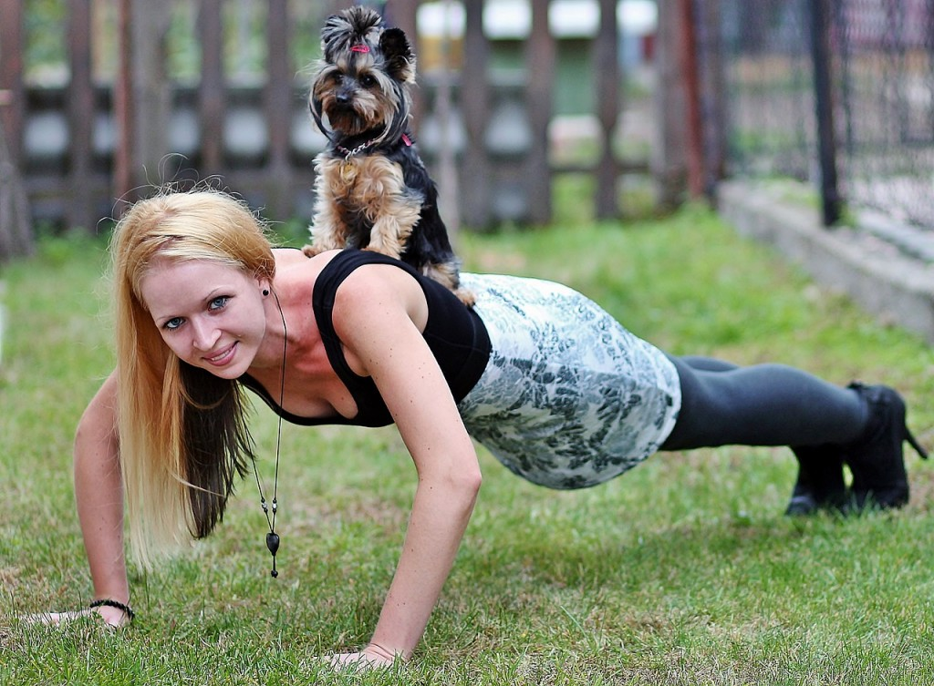 Consider your dog as a workout companion