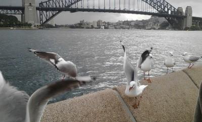 Australia, Sydney
