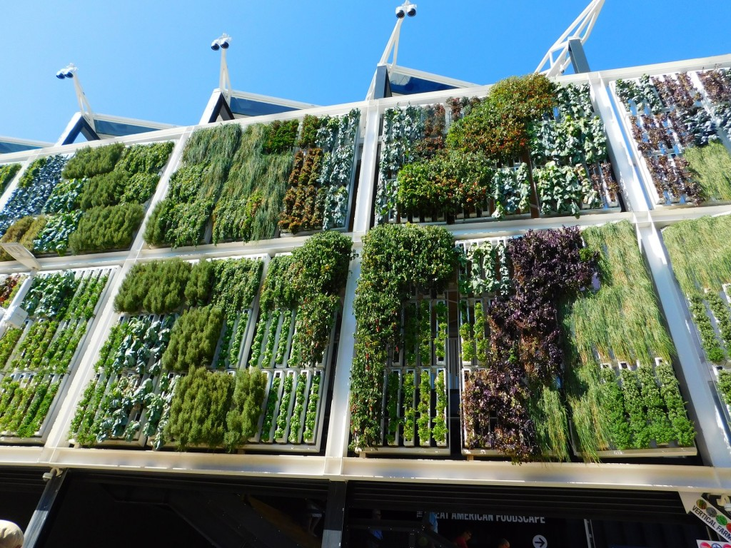 green house walls for sustainable energy