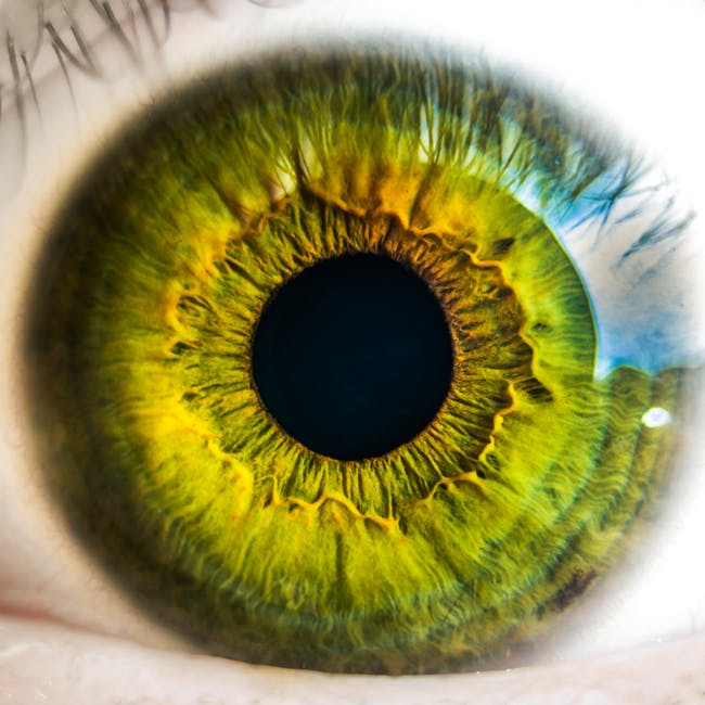 Choosing the Right Contact Lenses-Extended wear contacts