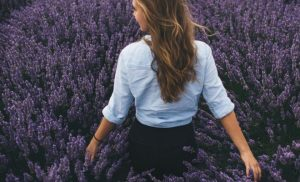 Back shot of a woman walking in a lavender field