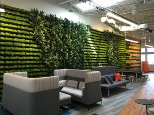 Office Design Trends of 2019 - greenery on the office walls