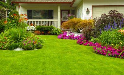 Manicured front garden
