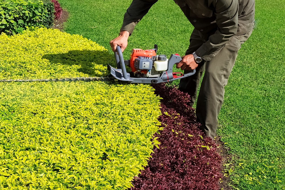 Few Tips to Save Money for Landscaping-professional-landscapers