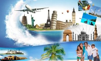 plane, cruise, travel,