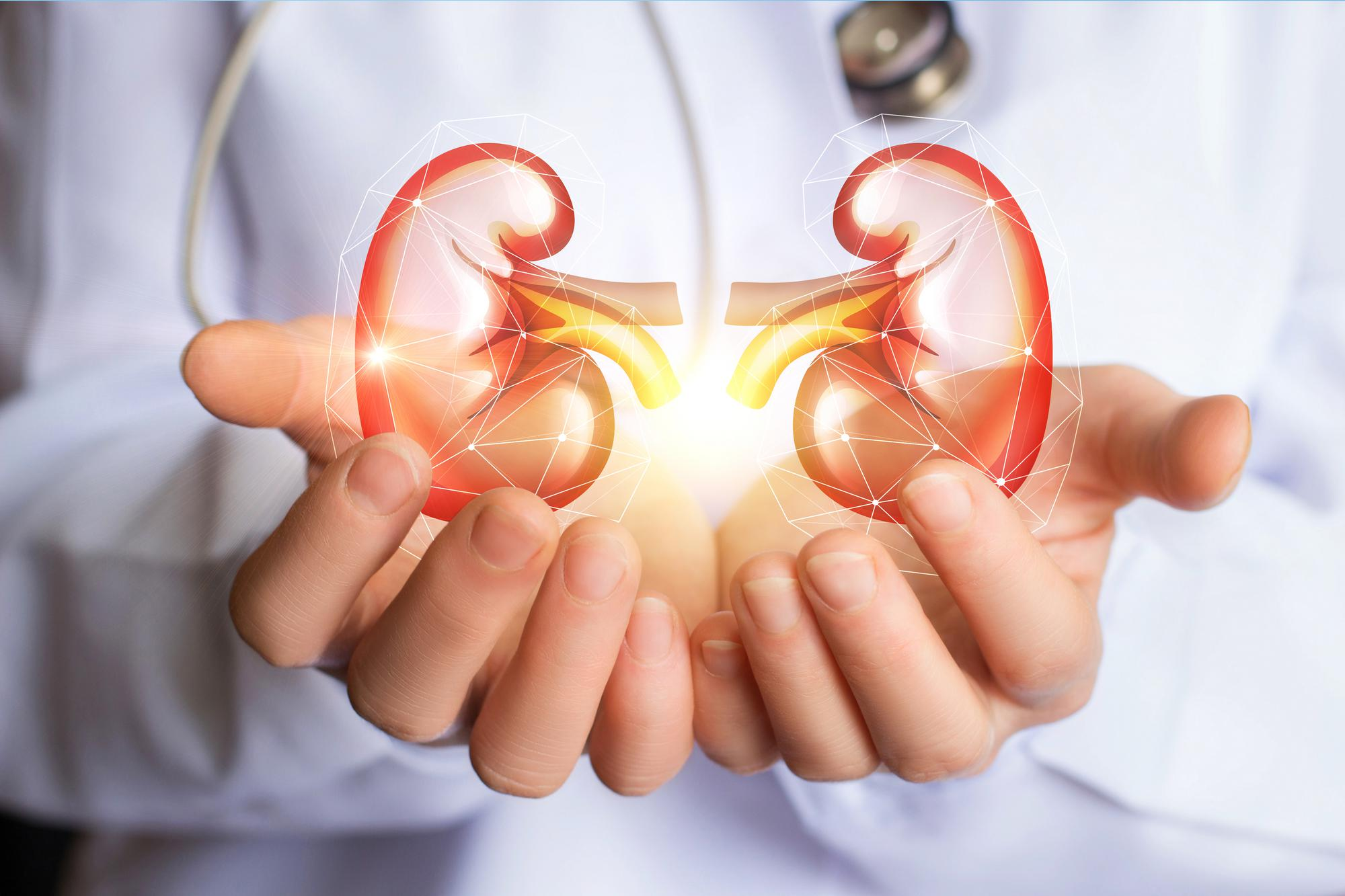 Proven Tips to Keep Your Kidneys Healthy and Strong