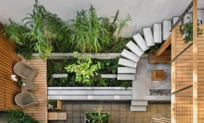 outdoor, garden,