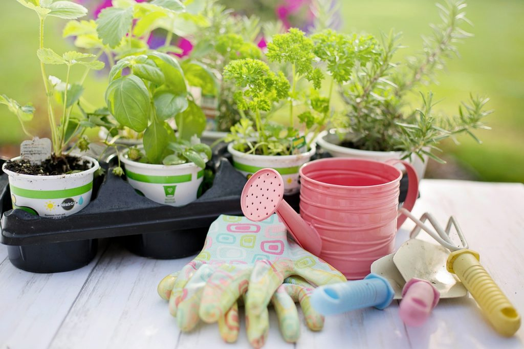 Tips for Beautiful and Luxurious Gardens in Small Spaces