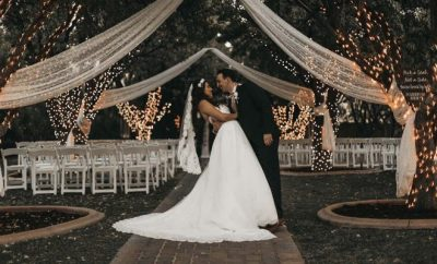 wedding, bride, reception