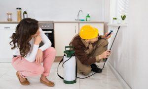 pest control spraying a home