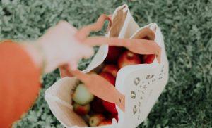 A bag with fresh produce