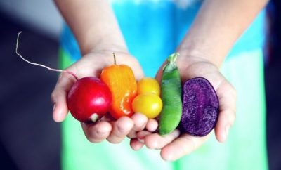 hand with coloured vegetables