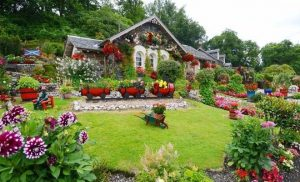 Manicured backyard garden