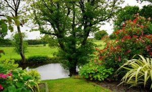 manicured garden, backyard