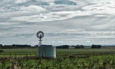 Windmill in a farm