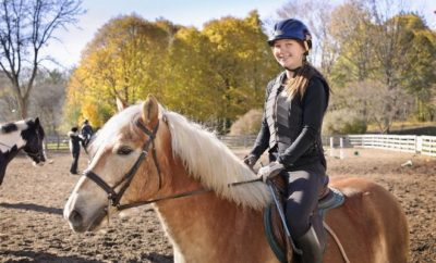 Horse riding, Esquarian ,