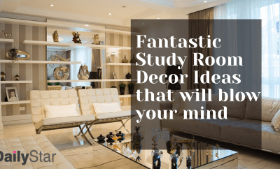 Fantastic Study Room Decor Ideas that will blow your mind